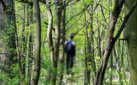 İsmayıllıda nişanlı gənc özünü qoz ağacından asdı - Yaxın günlərdə toyu olacaqdı