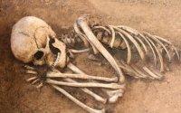 Alimlər ölünün parçalanmasını lentə aldı: 17 ay hərəkət edirmiş
