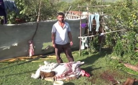 """""""Leş Tofiq""""dən sonra """"Leş Elgün"""" də ələ keçdi - Video"""