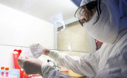 Azərbaycanda koronavirusdan ölənlərin sayı artdı