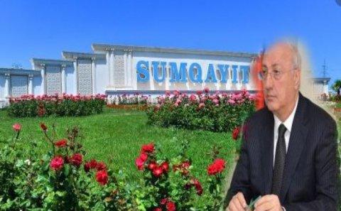 Zakir Fərəcovun korrupsiya qoxuyan bulvarı - 6 milyonluq gül, kol-kos tenderi...
